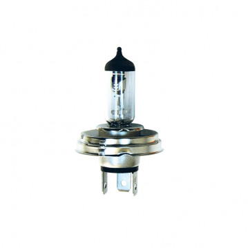 Ampoule H4 12V P45 - Blanche